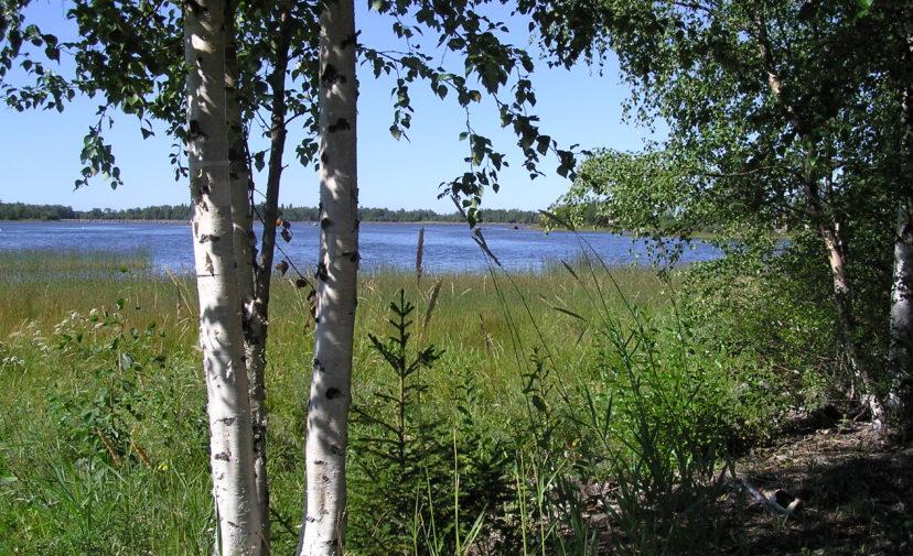Kalajoen sijainti maan ja meren välissä tarjoaa monimuotoisen ja kauniin luonnon.