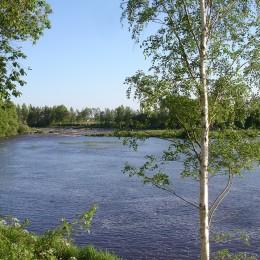 Pitkäsenkylän Herkon majalta jokinäkymää