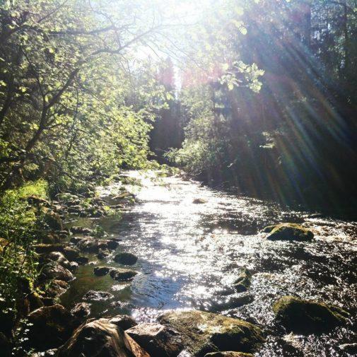 #sometatonni #kalajoki #huikeankaunisluonto