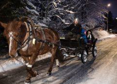 Hevonen ja hevoskärry kuljettaa kyydissä olevia