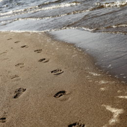 Jäljet uimaveden hiekkarannalla
